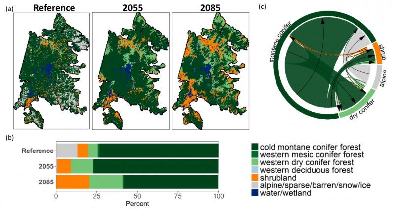 Potential changes in vegetation distribution in Yellowstone and Grand Teton NP, adjacent Forest Service wilderness areas: (a) the baseline period and years 2055 and 2085, (b) vegetation composition for each time period, (c) projected shifts